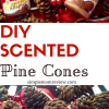 Homemade Scented Pine Cones