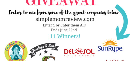 Blog Anniversary Giveaway (2)